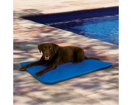 Cool Bed coup de chaleur chien tapis rafraichissant Taille L