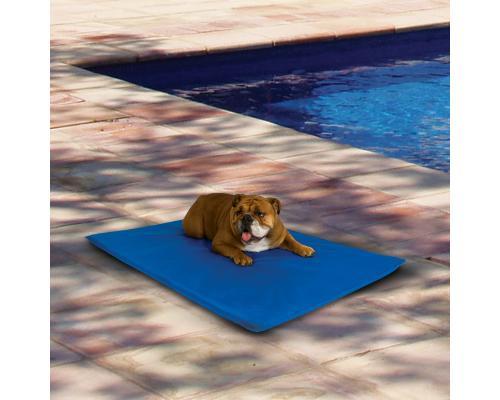 Cool Bed coup de chaleur chien tapis rafraichissant Taille M