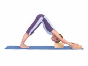 brique yoga pratique