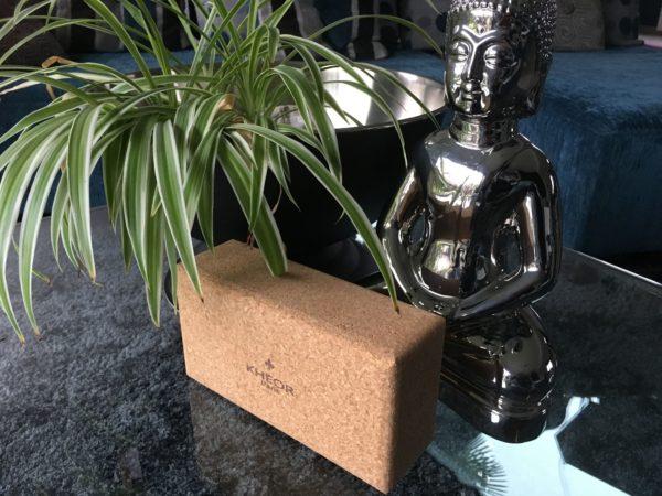 Brique de yoga en liège carpé zen 2